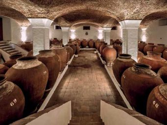 """Exclusive interview for """"Terracotta and wine"""" with producers from Alentejo (Portugal) who have been making wine in terracotta jars called Talhas for 200 years"""