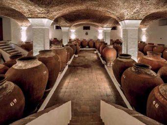 Sette cantine moderne e una scommessa antica chiamata Talhas. Intervista esclusiva ai produttori di vino di Alentejio
