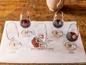 """""""La terracotta e il Vino 2016"""": scatti e ricordi in ordine sparso – Foto di Guillame Bodin –"""