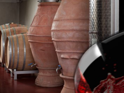 Comparison of the chemical/sensorial characteristics of Sangiovese and Cabernet Franc wines made in amphora and stainless steel – Tania Martellini
